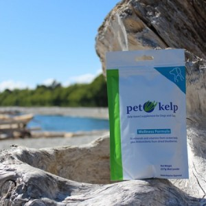 Pet Kelp Wellbeing 227g