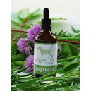 BH Herbal Flea Repellent