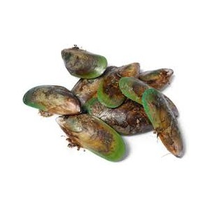 Green Lipped Mussel Powder 100g