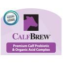 Calf Brew 4L