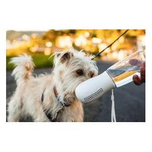 Thirsty Dog Travel Bottle 550ml